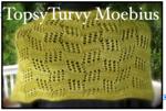 Topsy Turvy Moebius